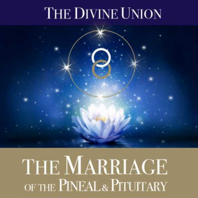 The Marriage of the Pineal and Pituitary by Jo Dunning